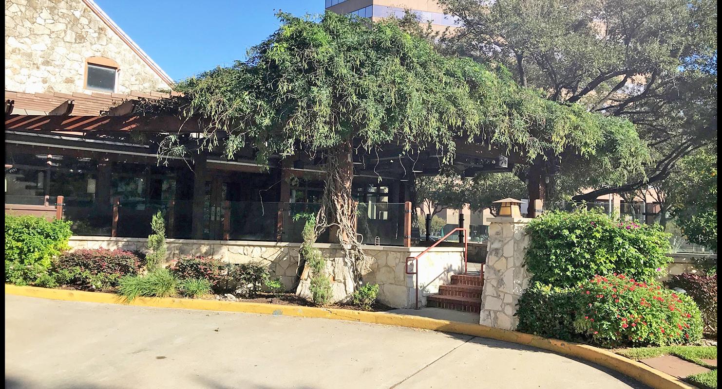 610 at San Felipe